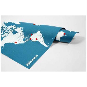 Карта мира LeFuturКарта мира LeFutur Palomar голубой LF-E19722<br>